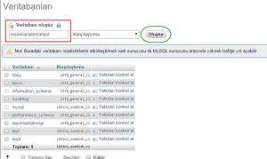 database_olusturma2
